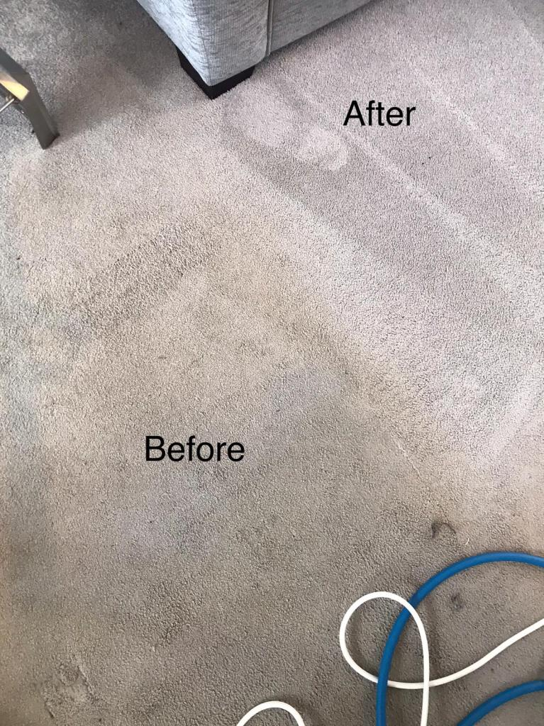 carpet cleaning and stain removal near me