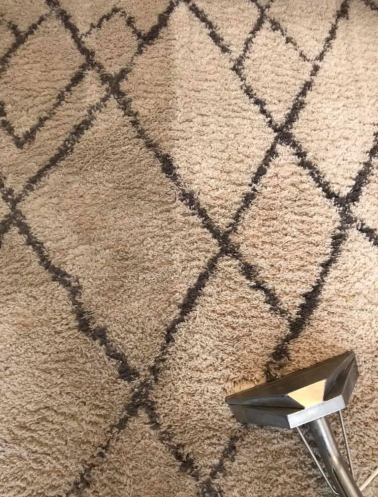 carpet upholstery clean